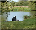 SK6009 : Fisherman on the River Soar by Mat Fascione
