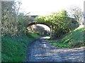 NZ8114 : Bridge over old railway line by Gordon Hatton