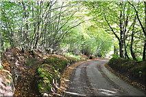 SS8928 : West Somerset : Windball Hill by Lewis Clarke