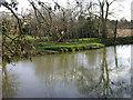 SP2965 : Floodmeadow, River Avon by Emscote Gardens, Warwick 2014, March 11, 15:27 by Robin Stott