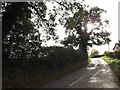 TM0562 : Whitehall Road, Old Newton by Geographer
