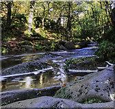 SK2579 : Burbage Brook in Padley Gorge by Andy Stephenson