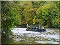 SU9083 : Cliveden - Narrowboat by Colin Smith