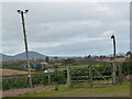 NT5524 : Christmas tree plantation on Netherraw Hill by Oliver Dixon
