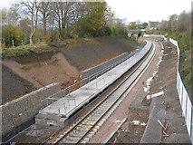 NT3461 : Gorebridge Station grows by M J Richardson