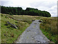 SN7763 : Drover's road south-east of Strata Florida by Roger  Kidd