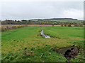 NT5719 : Stream on the floodplain of the Teviot by Oliver Dixon