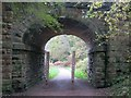 SO6412 : Dilke Bridge by Richard Webb