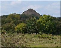 SP3492 : Mount Judd near Nuneaton by Mat Fascione