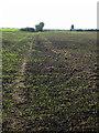 SP9749 : Bridleway to Grange Farm by Philip Jeffrey