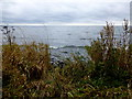 J0384 : Porlee Point, Lough Neagh by Kenneth  Allen