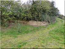 SS6807 : Site of a small quarry near Holm by David Smith