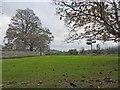 ST7397 : Direction finger post in green junction near Stancombe Park by Steve  Fareham