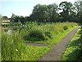 SP2964 : The peninsula, Kingfisher Pool, Myton Fields, Warwick by Robin Stott
