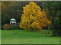 TQ0651 : Hatchlands Park formal gardens by Alan Hunt