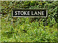 TG2201 : Stoke Lane sign by Adrian Cable