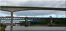 NZ2563 : The River Tyne by Bobby Clegg
