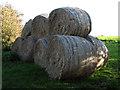 TF8323 : Straw bales beside Weasenham Road by Evelyn Simak