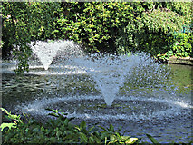SK5319 : Queens Park by Thomas Nugent