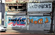 J3374 : Decorated shutter doors, Belfast - November 2014(1) by Albert Bridge