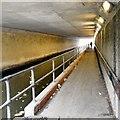 SJ9495 : Canal under motorway by Gerald England