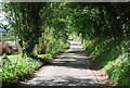 TR0843 : Pilgrims' Way by N Chadwick