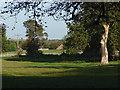 SU9355 : Farmland near Pirbright by Alan Hunt