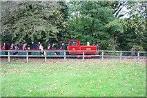 SP4416 : 'Winston' hauling miniature railway train in Blenheim Park by Roger Templeman