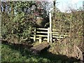 SK3820 : Stile and Footbridge at Staunton Walk by Ian Calderwood