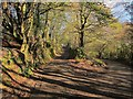 SX3869 : Junction on Callington Road by Derek Harper