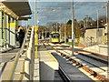 SJ8088 : Metrolink Airport Line, Roundthorn Tram Stop by David Dixon