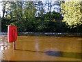 H4772 : Lifebelt, Camowen River by Kenneth  Allen