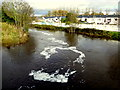 H4572 : Froth along the Camowen River, Omagh by Kenneth  Allen