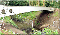 J3673 : New footbridge, Orangefield Park, Belfast - July 2014(2) by Albert Bridge