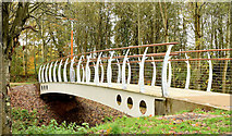 J3673 : New footbridge, Orangefield Park, Belfast (November 2014) by Albert Bridge