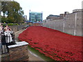 TQ3380 : Poppies at The Tower of London #3 by Richard Humphrey