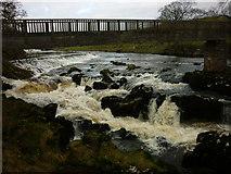 SE0063 : Tin Bridge at Linton Falls by Carroll Pierce