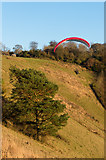 TQ2452 : Paraglider, Colley Hill by Ian Capper