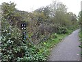 SK5087 : Hidden junction sign on NCN674 by Steve  Fareham