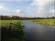 TM1678 : River Waveney at Billingford Bridge by Adrian Cable