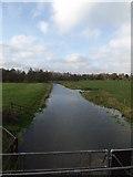 TM1678 : River Waveney at Billingford Bridge by Adrian Cable