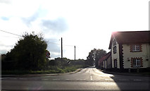 TM1678 : Low Road, Billingford by Adrian Cable