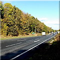 SJ2934 : A5 north of Gobowen by Jaggery