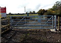 SJ2934 : Gate on the east side of a level crossing south of Weston Rhyn by Jaggery