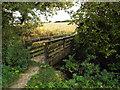 SP2080 : Footbridge over a brook northeast of Northfields Farm by Robin Stott