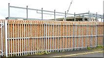 J3272 : The new Railway Stand, Windsor Park, Belfast - November 2014(3) by Albert Bridge