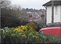 TQ2087 : View from Sycamore Close, Kingsbury by David Howard