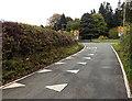 SJ2736 : NW boundary of Weston Rhyn by Jaggery