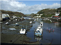 SX2553 : River Looe by JThomas