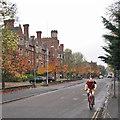 TL4357 : Cycling past Selwyn by John Sutton